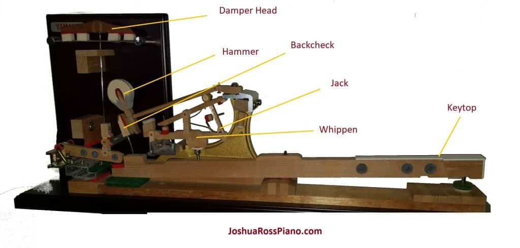 piano hammer action diagram